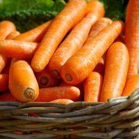 mâncare bebelus,retete bebe,diversificare,bebelușului,nutritie,pediatrica,alimentație, gătită,morcov,legumă,mâncare,legumă,păstârnac,mâncare gătită