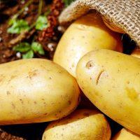 cartofi,Cartoful,cartof